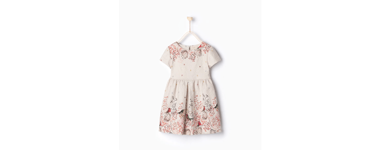 what to wear for family photos Zara dress for girls